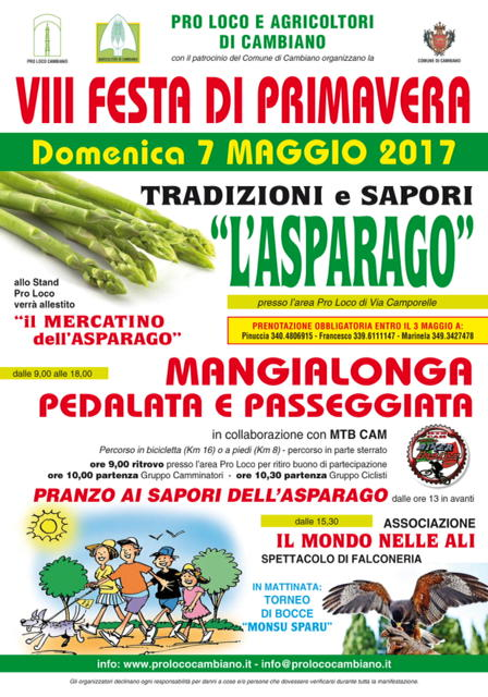 VIII Festa Primavera 70x100.pdf